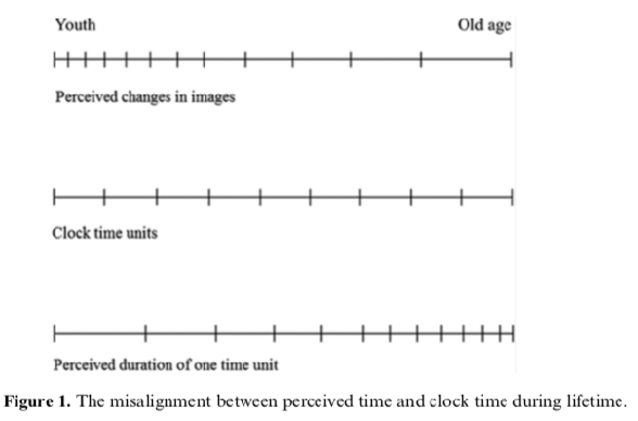 Scheme of time perception with age
