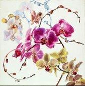 Подбор картин с Цветами. Художница Наталия
